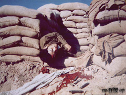 دفاع مقدس ، جنگ هشت ساله ، لحظه شهادت در دفاع مقدس ، آرشیو موضوعی دفاع مقدس - 08