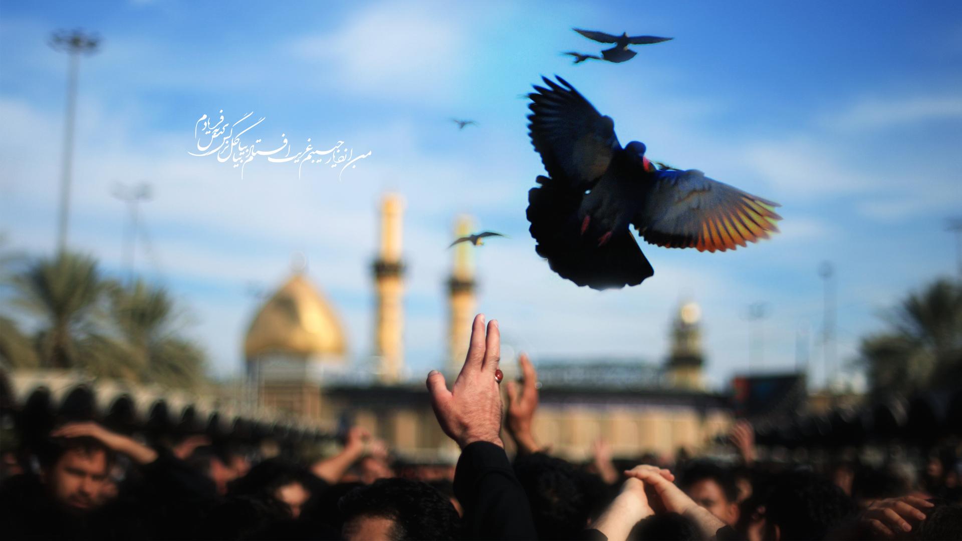 رابطه عقل و عاطفه در عزاداری سید الشهدا(ع)